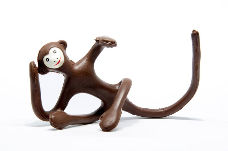La scimmiettà zizì di Bruno Munari foto di Carlo Pozzoni